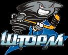 Хоккейный клуб Шторм
